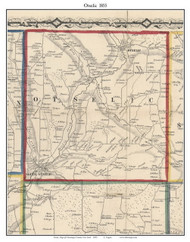 Otselic, New York 1855 Old Town Map Custom Print - Chenango Co.