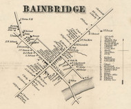 Bainbridge Village, New York 1855 Old Town Map Custom Print - Chenango Co.