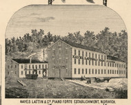 Hayes, Lattin & Co. Piano Factory , New York 1855 Old Town Map Custom Print - Chenango Co.
