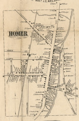 Homer Village, New York 1855 Old Town Map Custom Print - Cortland Co.