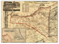 Sidney, New York 1856 Old Town Map Custom Print - Delaware Co.