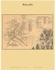 Walton Village, New York 1856 Old Town Map Custom Print - Delaware Co.