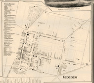 Geneseo Village, New York 1858 Old Town Map Custom Print - Livingston Co.