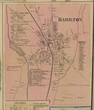Hamilton Village, New York 1859 Old Town Map Custom Print - Madison Co.
