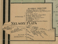 Nelson Flats, New York 1859 Old Town Map Custom Print - Madison Co.