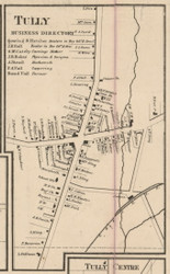 Tully Village, New York 1859 Old Town Map Custom Print - Onondaga Co.