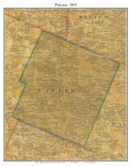 Palermo, New York 1854 Old Town Map Custom Print - Oswego Co.