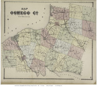 Oswego County, New York 1867 - Old Map Reprint