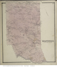 Hastings, New York 1867 - Old Town Map Reprint - Oswego Co.