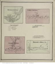 Phoenix Village - Schroeppel, New York 1867 - Old Town Map Reprint - Oswego Co.