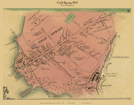 Cold Spring, New York 1854 Old Town Map Custom Print - Putnam Co.