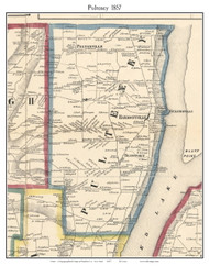 Pultney, New York 1857 Old Town Map Custom Print - Steuben Co.