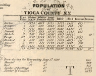Population of Tioga County, New York 1855 Old Town Map Custom Print - Tioga Co.