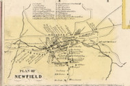 Newfield Village, New York 1853 Old Town Map Custom Print - Tompkins Co.