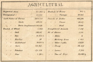 Agricultural Statistics, New York 1858 Old Town Map Custom Print - Warren Co.
