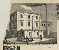 McColloch Steam Flouring Mills - Dauphin Co., Pennsylvania 1858 Old Town Map Custom Print - Dauphin Co.