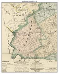 Birmingham Township, Pennsylvania 1876 Old Town Map Custom Print - Delaware Co.