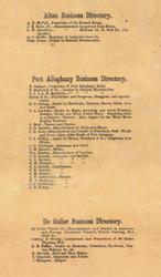 Alton, Port Alleghany, & DeGolier Business Directory - McKean Co., Pennsylvania 1871 Old Town Map Custom Print - McKean Co.
