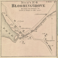 Blooming Grove Village & Nyce's PO - Blooming Grove Township, Pennsylvania 1872 Old Town Map Custom Print - Pike Co.