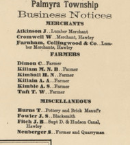 Palmyra Business Directory - Palymra Township, Pennsylvania 1872 Old Town Map Custom Print - Pike Co.