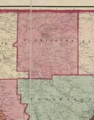 Farmington Township, Pennsylvania 1865 Old Town Map Custom Print - Warren Co. (Beers)