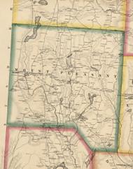 Mount Pleasant Township, Pennsylvania 1860 Old Town Map Custom Print - Wayne Co.