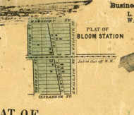 Bloom Station - Cook Co., Illinois 1861 Old Town Map Custom Print - Cook Co.