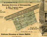 Lemont Village - Cook Co., Illinois 1861 Old Town Map Custom Print - Cook Co.