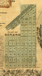 Des Plaines - Cook Co., Illinois 1861 Old Town Map Custom Print - Cook Co.