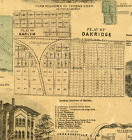 Harlem and Oak Ridge - Cook Co., Illinois 1861 Old Town Map Custom Print - Cook Co.
