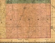 Bloom, Illinois 1886 Old Town Map Custom Print - Cook Co.