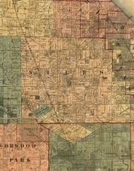 Niles, Illinois 1886 Old Town Map Custom Print - Cook Co.