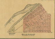 Mount Forest - Cook Co., Illinois 1890 Old Town Map Custom Print - Cook Dupage Cos.