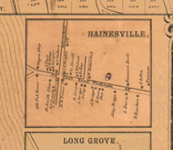 HainesvilleVillage - Lake Co., Illinois 1861 Old Town Map Custom Print - Lake Co.