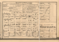 Brimfield Village - Peoria Co., Illinois 1861 Old Town Map Custom Print - Peoria Co.