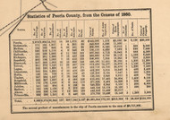 Peoria Co. 1860 Census Statistics - Peoria Co., Illinois 1861 Old Town Map Custom Print - Peoria Co.