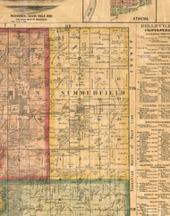 Summerfield, Illinois 1863 Old Town Map Custom Print - St. Clair Co.