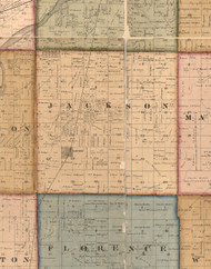 Jackson, Illinois 1862 Old Town Map Custom Print - Will Co.