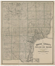 Wayne County Michigan 1894 - Old Map Reprint