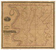 Issaquena County Mississippi 1873 - Old Map Reprint