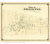 Princeton Village - Princeton Township, New Jersey 1875 Old Town Map Reprint - Mercer Co.