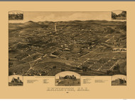 Anniston, Alabama 1887 Bird's Eye View
