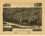 Tuskaloosa, Alabama 1887 Bird's Eye View