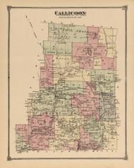 Callicoon, New York 1875 - Old Town Map Reprint - Sullivan Co. Atlas