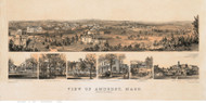 Amherst, Massachusetts ca 1850 Custom Wide Bird's Eye View - Old Map Reprint BPL