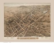 Holliston, Massachusetts 1878 Bird's Eye View - Old Map Reprint BPL