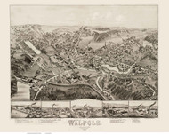 Walpole, Massachusetts 1882 Bird's Eye View - Old Map Reprint BPL