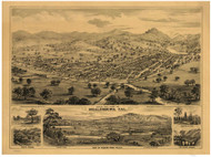 Healdsburg, California 1876 Bird's Eye View