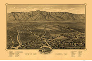 San Gabriel, California 1893 Bird's Eye View