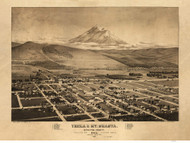 Yreka and Mount Shasta, California 1884 Bird's Eye View